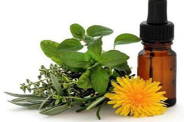 Existen plantas que tienen usos terapéuticos. (Foto Prensa Libre: tomada de masmedicina.com)