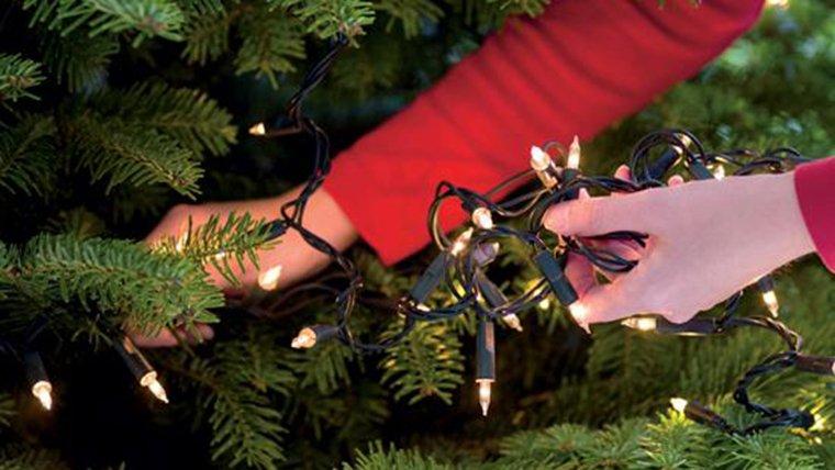 En las ciudades alemanas de Múnich y Núremberg se eliminarán cerca de 200 toneladas en árboles utilizados durante Navidad (Foto HemerotecaPL)