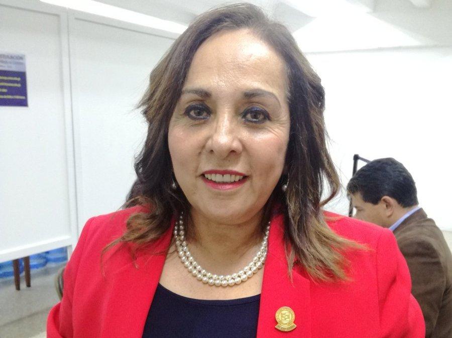 Amelida Pineda es la actual presidenta del Colegio de Contadores Públicos. (Foto Prensa Libre: Guatemala Visible)