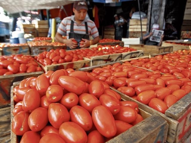 Alza de precio en el tomate provoca aumento en otros alimentos
