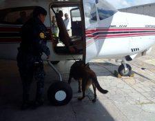 Aeronaves inmovilizadas por sospechas de uso de grupos del crimen organizado. (Foto Prensa Libre: PNC)