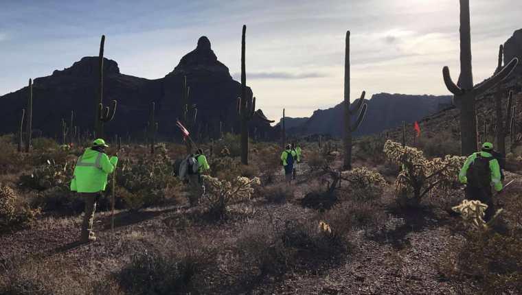 Grupo de voluntarios en plena búsqueda de desaparecidos. (Foto: Facebook/Águilas del Desierto)