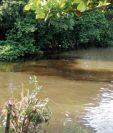 Una mancha café se extiende por el arroyo Petexbatún, el cual desemboca en el río La Pasión, en Sayaxché. (Foto Prensa Libre: Rigoberto Escobar)