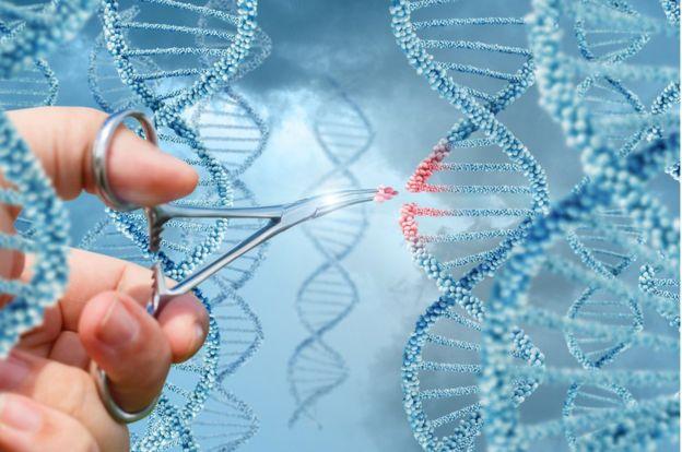 La edición del genoma tiene la capacidad de alterar radicalmente la forma en que tratamos las enfermedades, pero tiene algunos riesgos. GETTY IMAGES