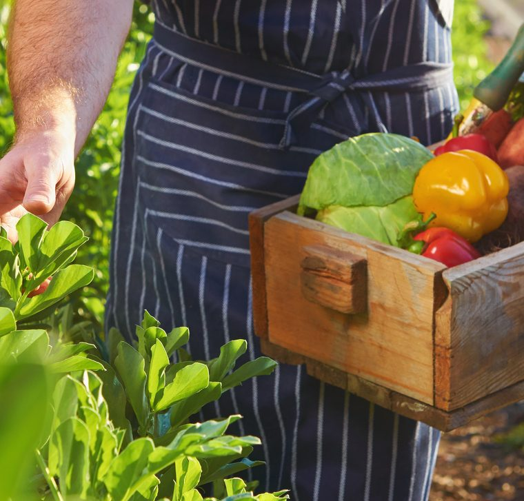 Tener como proveedores a agricultores locales o de la comunidad donde se ubica el restaurante también es una práctica aconsejable. (Foto Prensa Libre: Shutterstock)