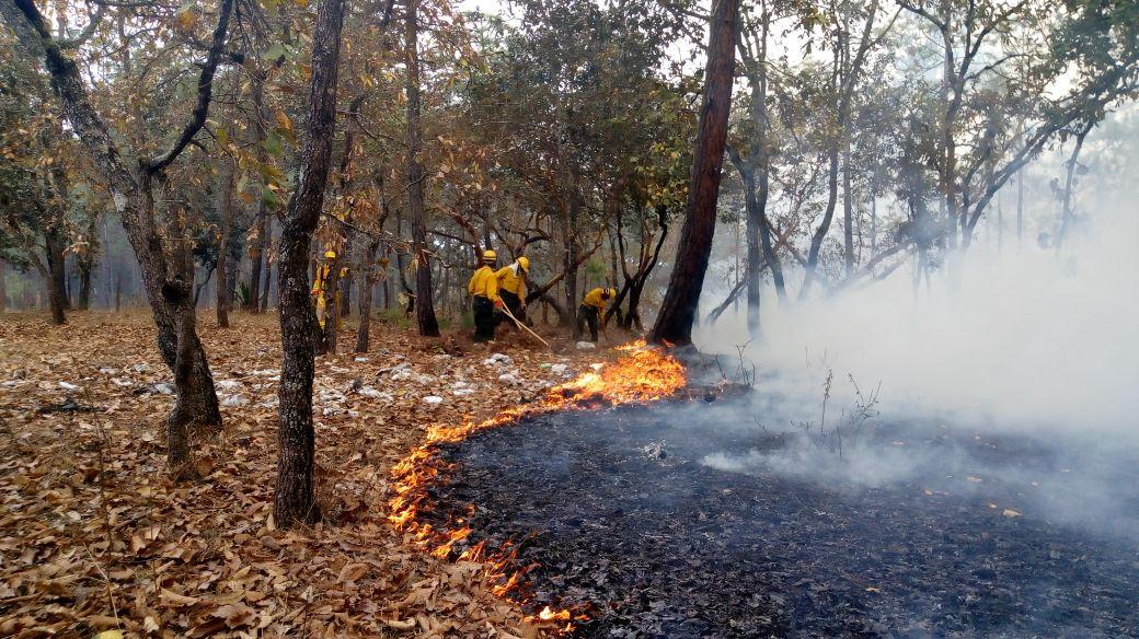 Imagen de un incendio forestal en Quiché. El aumento de la temperatura favorece estos fenómenos. (Foto Prensa Libre: Hemeroteca PL)