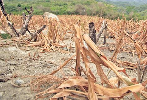 Diputado asegura que la ampliación del Estado de Calamidad es anómala. (Foto Prensa Libre: ARCHIVO).