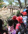 Cientos de infantes asistieron al Zoológico La Aurora para celebrar el Día del Niño (Foto Prensa Libre: Érick Ávila)