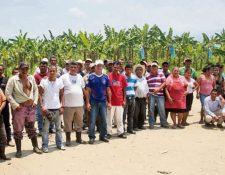 Parte del  grupo de trabajadores  que se mantiene en paro, en   Morales, Izabal. (Foto Prensa: Edwin Perdomo)