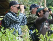 La industria de observación de aves mueve miles de millones de dólares. Carlos Mario Wagner