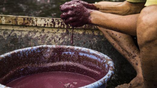 Brasil es el mayor productor de açaí del mundo. GETTY