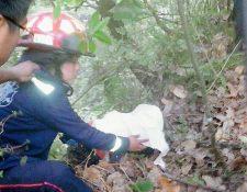 Los cuerpos estaban semienterrados en una zona montañosa de San Juan Argueta, Sololá. (Foto Prensa Libre: CBMD)