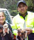 Efrén Antonio Paredes España dedica parte de su tiempo como PMT para resctar animales callejeros o que son maltratados en un hogar. (Foto Prensa Libre: Cortesía)
