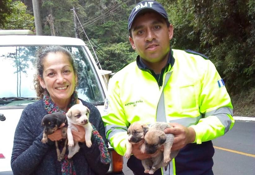 Agente de PMT de Mixco rescata animales y les brinda hogar