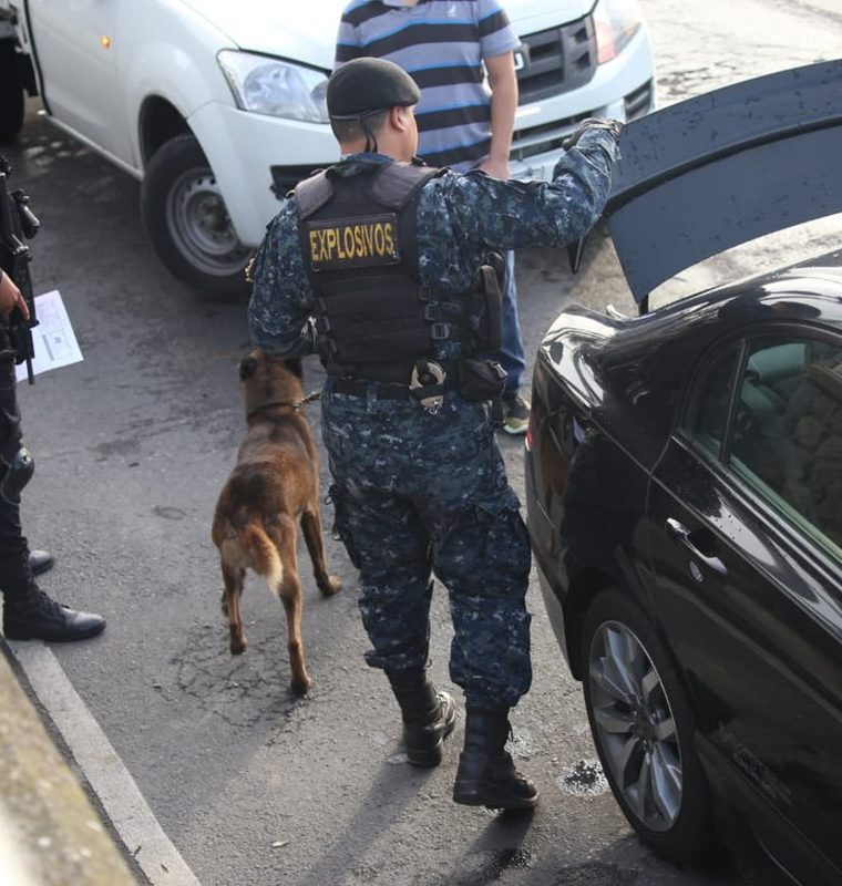 Si una persona se niega a bajar del vehículo se llama al MP y se lleva un perro adiestrado para que busque drogas.(Prensa Libre: PNC)