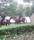 Agentes de la PNC en Raxruhá, Alta Verapaz, efectúan patrullajes a caballo. (Foto Prensa Libre: PNC)