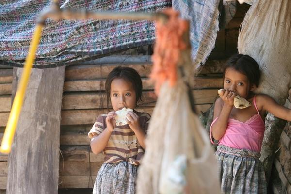 """Casi la mitad de niños menores de 5 años del país padecen desnutrición crónica.<br _mce_bogus=""""1""""/>"""