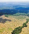 La tala de árboles, la ganadería y los incendios han afectado gravemente el área de la biosfera maya