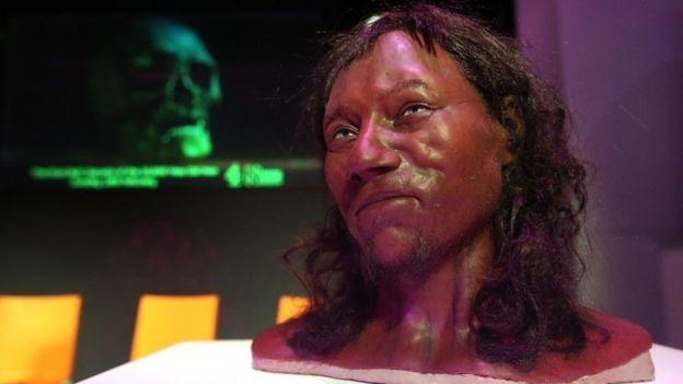 """El color oscuro de la piel protegía al """"hombre de Cheddar"""" de los efectos nocivos del sol. PA"""
