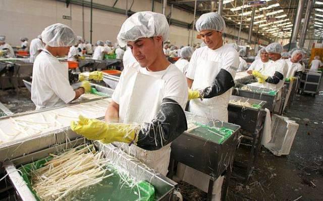 Hay 11.1 millones de guatemaltecos en edad de trabajar