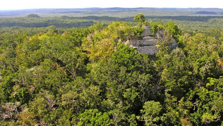 Se cree que la poderosa dinastía Kan, de la antigua civilización maya, surgió en El Mirador. Foto Prensa Libre: Dennis Jarvis.