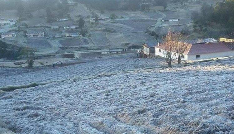 Los cultivos podrían verse afectados por heladas, advierte el Insivumeh. (Foto Prensa Libre: Hemeroteca PL)