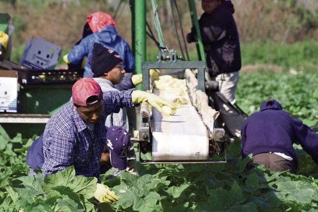 Rescatan a guatemaltecos retenidos en México
