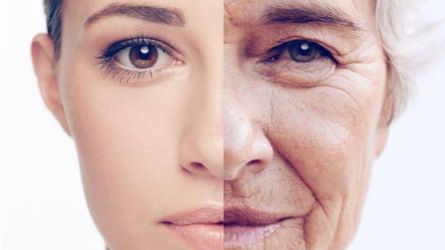 A medida que envejecemos, nuestro cuerpo reduce la producción de glutatión. YURI_ARCURS