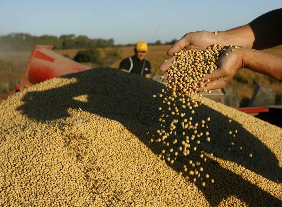China apunta a productos agrícolas para comerciar con Latinoamérica