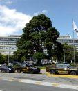 Fiscales allanan oficinas de la municipalidad en busca de información. (Foto Prensa Libre: Óscar Rivas)