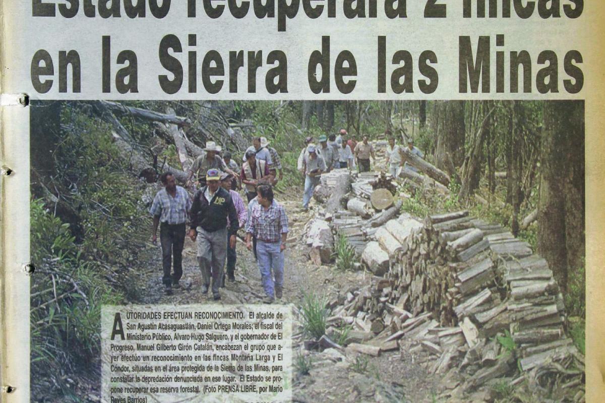 Depredación, un tema que tala a Guatemala