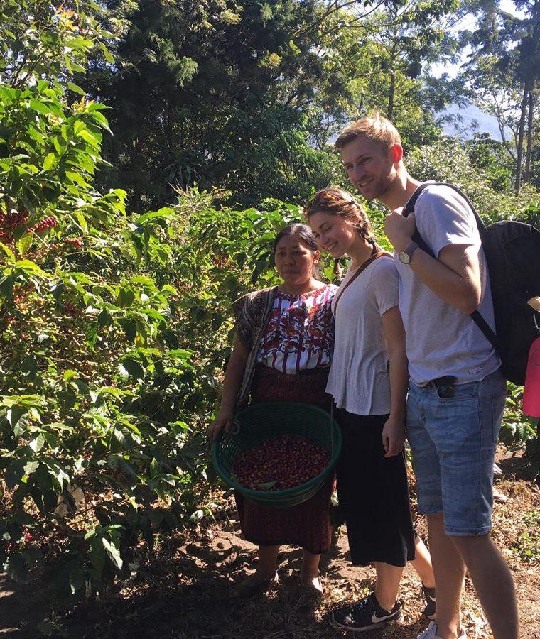 Desde hace un año comenzó formalmente la iniciativa, sin embargo varias cooperativas trabajan tiempo atrás con el proyecto de turismo y café. (Foto Prensa Libre: Cortesía)