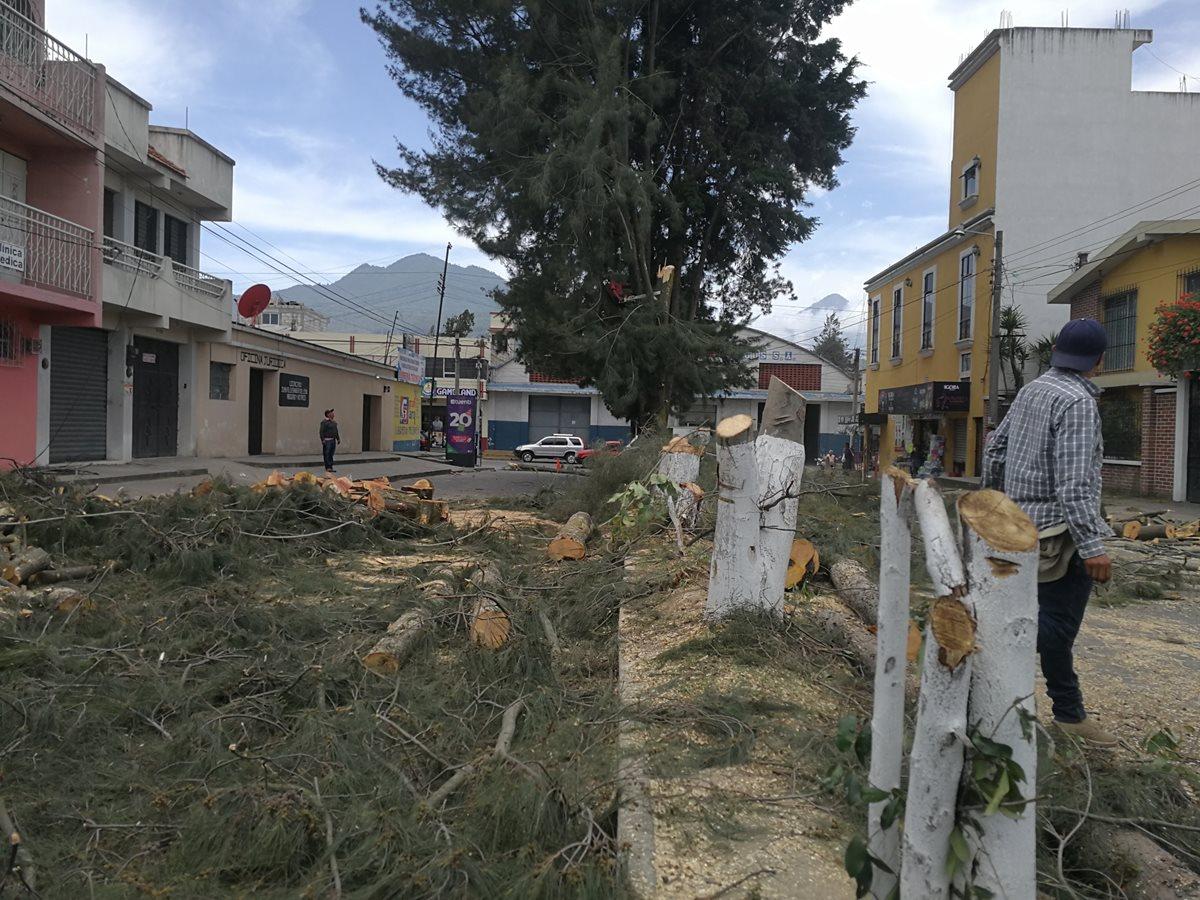 Así luce la calle donde los trabajadores municipales cortaron más de 20 árboles. (Foto Prensa Libre: Fred Rivera)