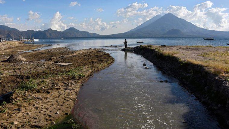 Las fuentes más grandes de contaminación son las aguas residuales y desechos sólidos, pues aportan fósforo y nitrógeno que nutren a la cianobacteria. (Foto Prensa Libre: AFP)