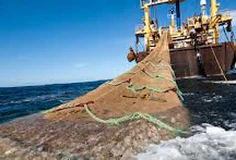 Costa Rica prohibe uso de redes de arrastre en la pesca