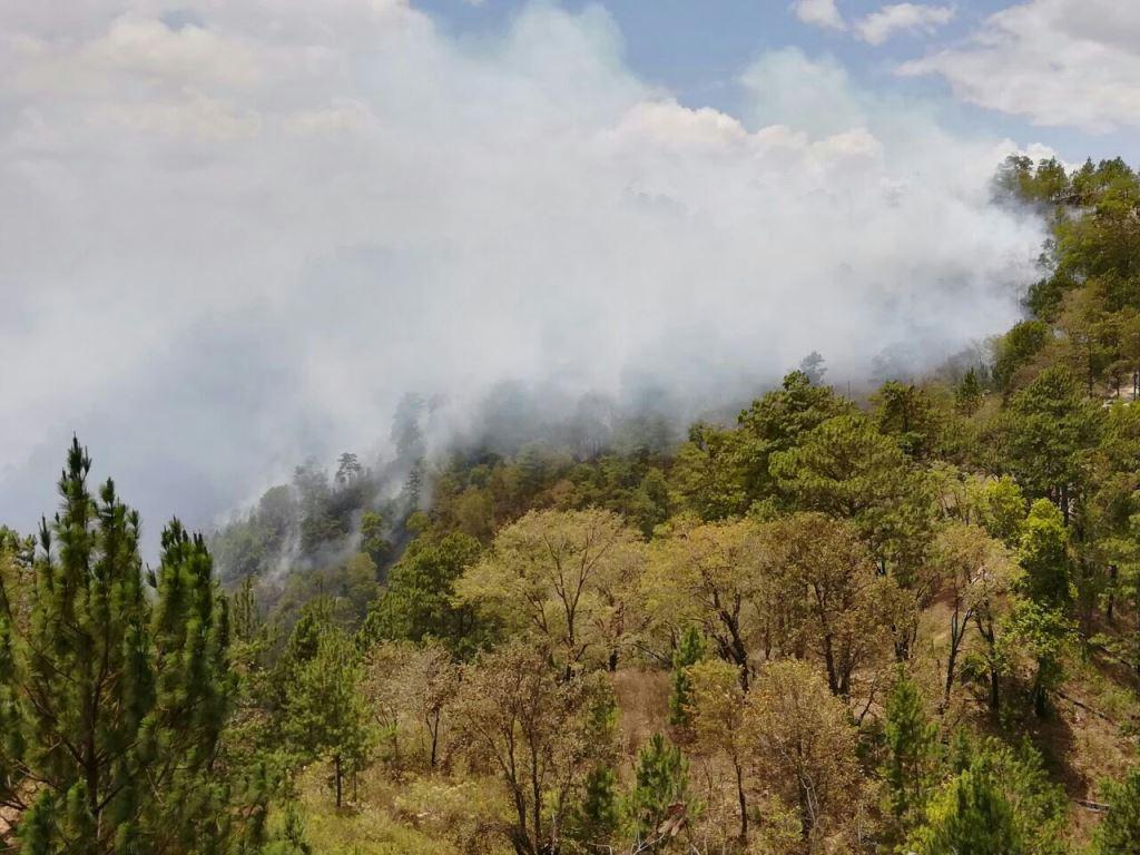 El tercer incendio de abril en Chiquimula consume zona boscosa de Jocotán. (Foto Prensa Libre: Mario Morales)