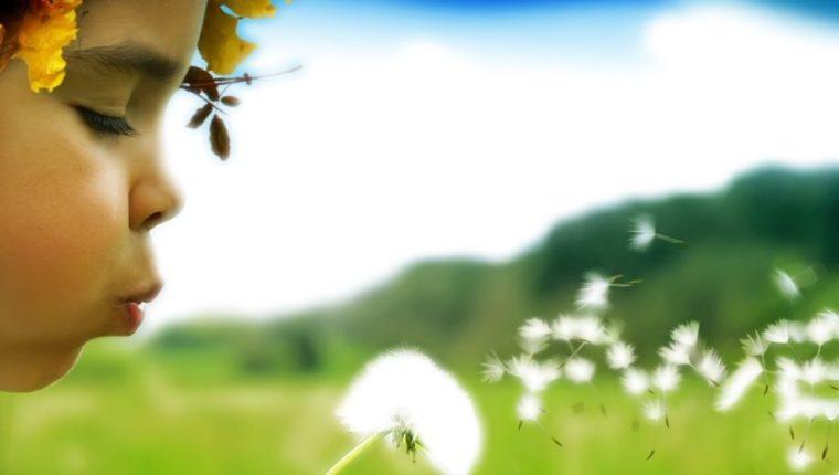 No es necesario ir lejos para encontrar la felicidad. Esta está más cerca de lo que imaginamos y está a nuestro alrededor.