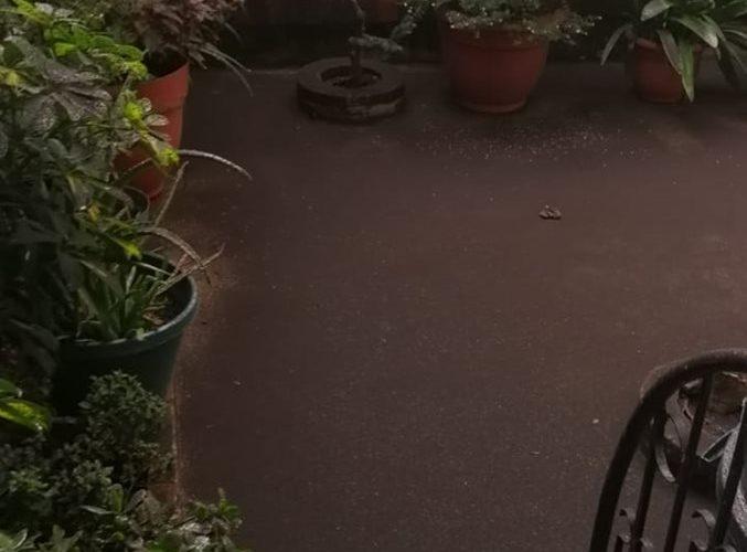Personas comparten como están los patios de sus casas en Chimaltenango.