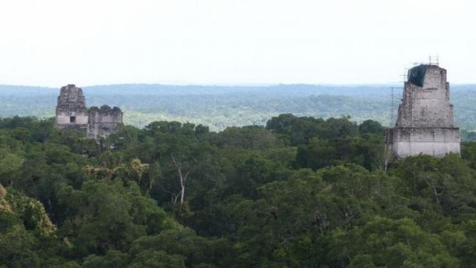 Biosfera maya en Guatemala. (Foto Prensa Libre: Internet)