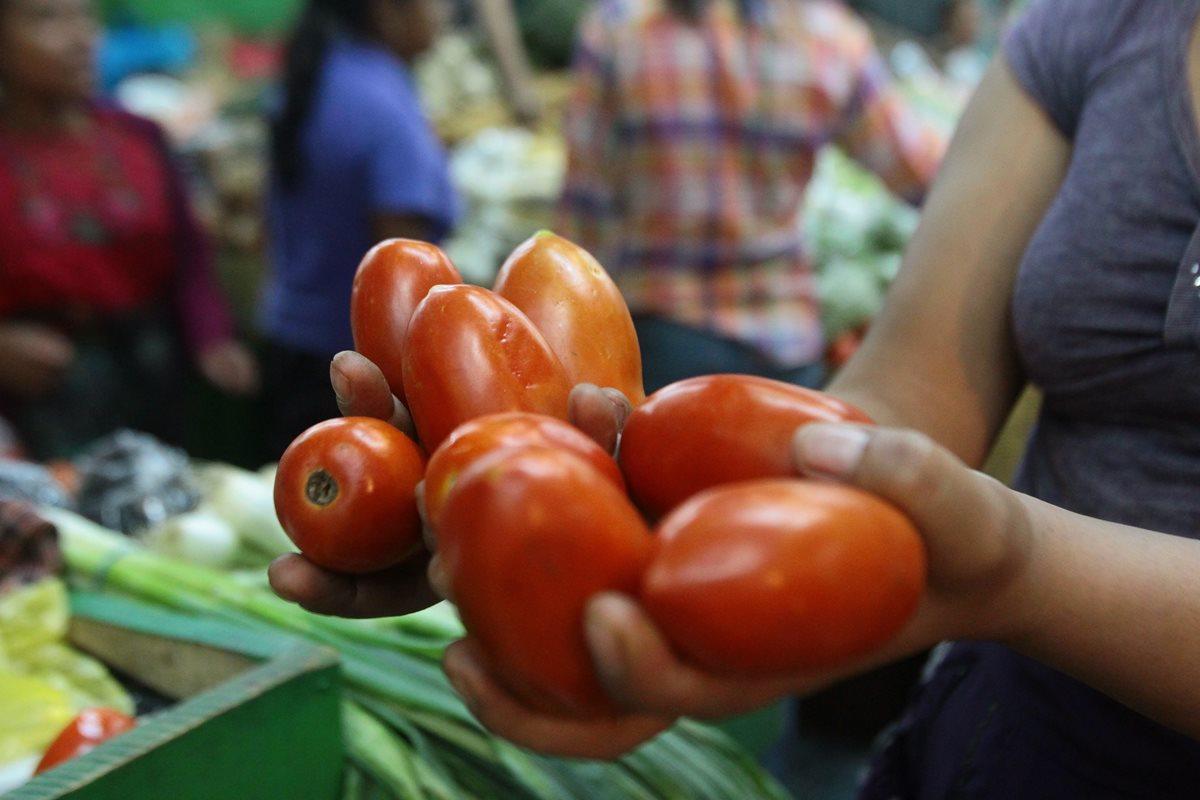 Los cinco factores que influyeron en el aumento del precio del tomate