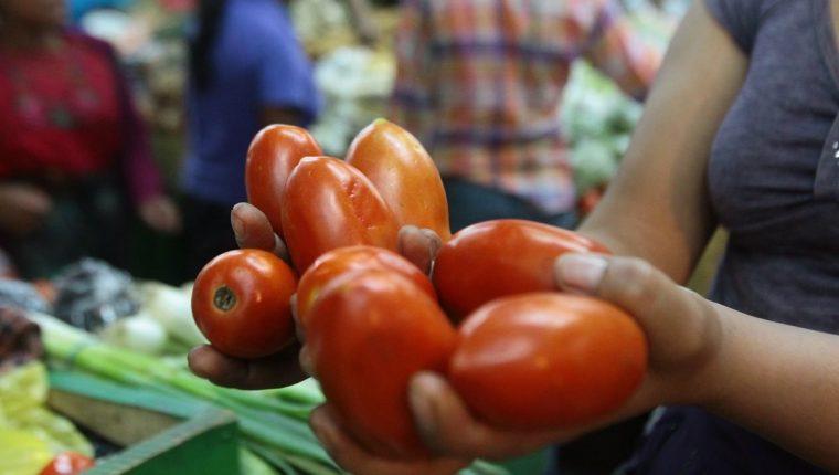 El tomate tiene un peso de 92% dentro del consumo de los hogares y a diario demandan media libra. (Foto Prensa Libre: Hemeroteca)