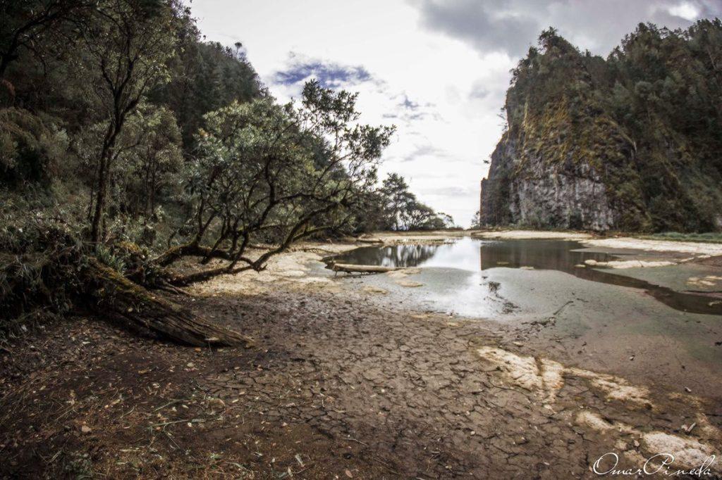 Este año se han denunciado varios lugares afectados por la sequía y el abandono de las autoridades.
