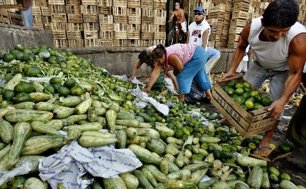 Sector agropecuario panameño necesita US$2,500 millones de inversión