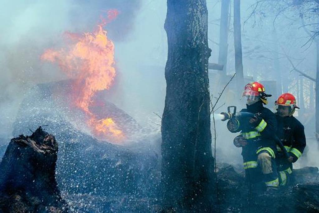 Miles de hectáreas han sido consumidas por las llamas en la provincia. (Foto Prensa Libre: Hemeroteca PL).