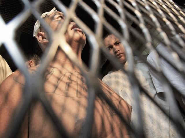 El Ministerio de Gobernación ha sugerido que las pandillas sean declaradas como grupos terroristas. (Foto Prensa Libre: Hemeroteca PL)