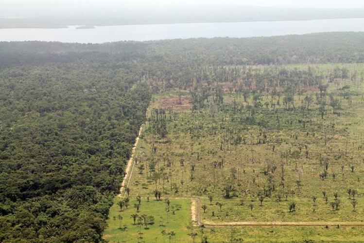 Punta de Manabique, en Izabal, es uno de los lugares que corren más riesgo en Guatemala debido a la deforestación, construcción de canales y el cambio de uso del suelo. (Foto HemerotecaPL)