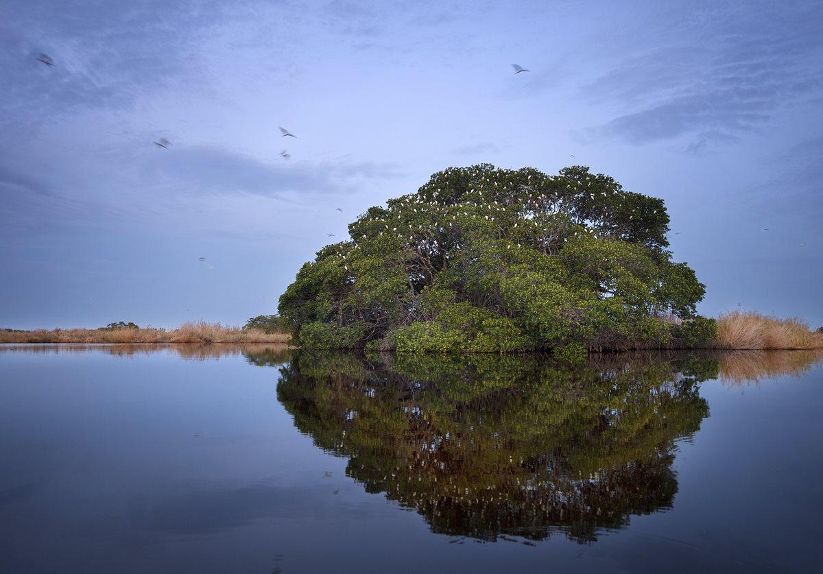 Impresionantes imágenes que revelan la belleza del Canal de Chiquimulilla