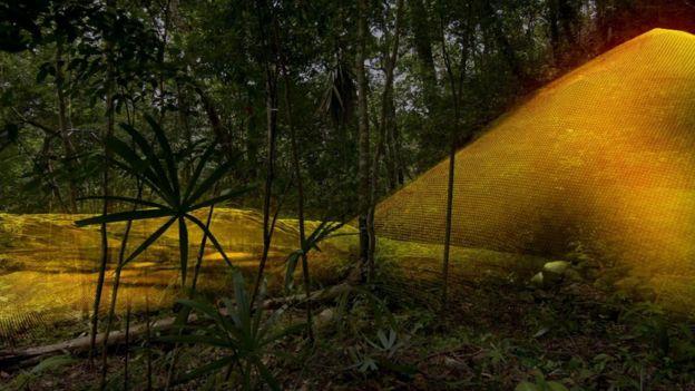 Los investigadores retiraron digitalmente el dosel forestal y la tecnología LiDAR reveló una pirámide de siete pisos que no había sido descubierta. Foto: Wild Blue Media/Channel 4/National Geographic