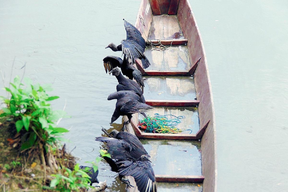 Buscan controlar contaminación en río La Pasión