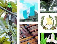 El Quetzal, la Bandera, la Marimba, la Ceiba, el Escudo de armas y la Monja Blanca son nuestros símbolos patrios. (Foto Prensa Libre: Hemeroteca PL)